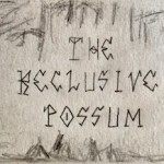 The Reclusive Possum