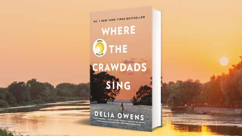 "500 Words or Less Review: ""Where the Crawdads Sing"" (Spoiler Free)"