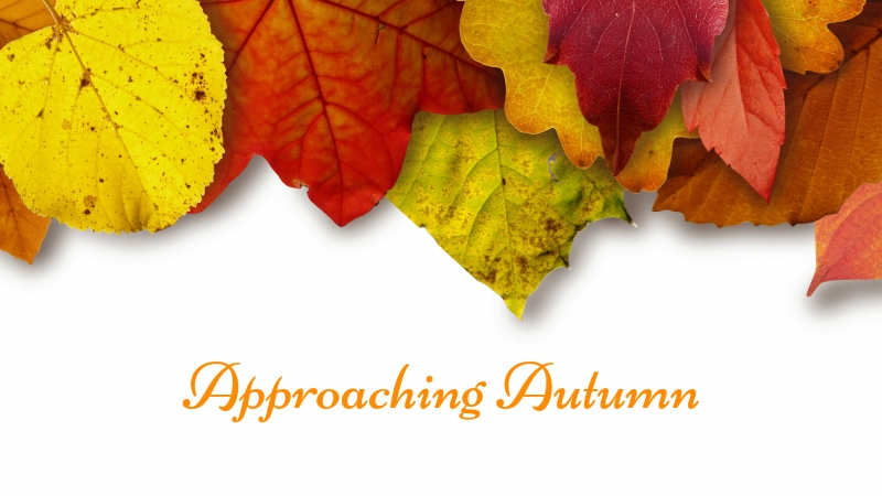 Approaching Autumn