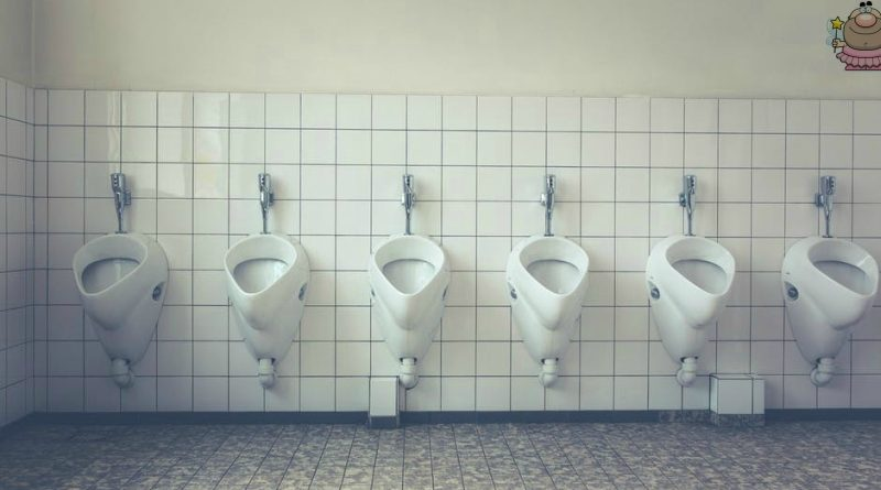 Ranting Ever On: The Bathroom Fairy